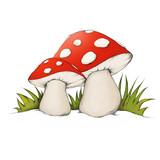 Zwei Pilze im Gras