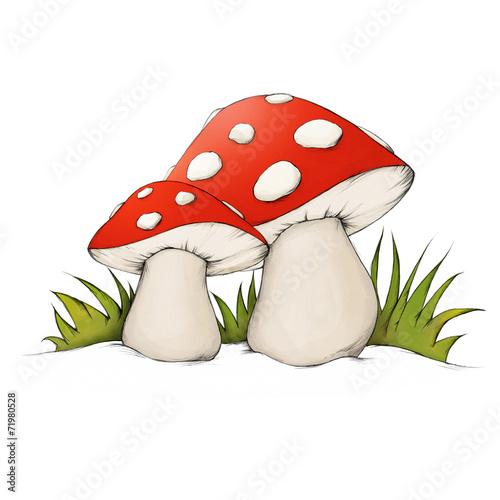 canvas print picture Zwei Pilze im Gras