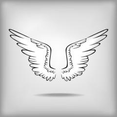 Contour wing icon