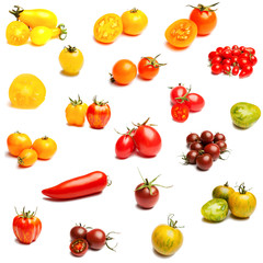 Collection of tomatoes on a white background