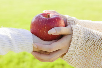 The hands of women who receive the apple