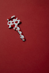 Heart covered key on red background