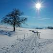 Verschneite Landschaft im Voralpenland