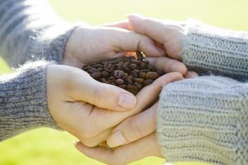 コーヒー豆を持っている女性の手