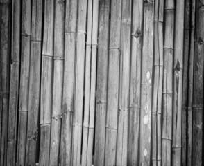 bamboo © detshana