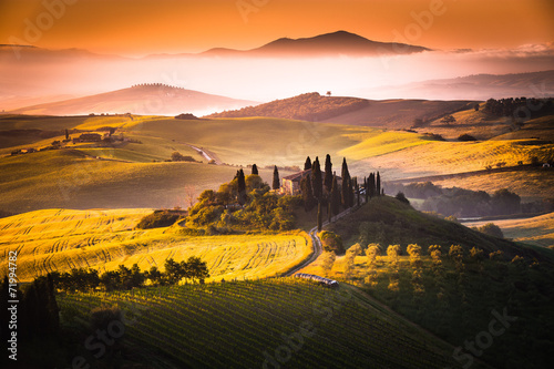 Tuscan Morning - 71994782