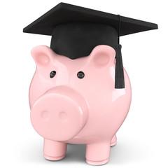 Sparschwein Schulkosten Studiengebühren