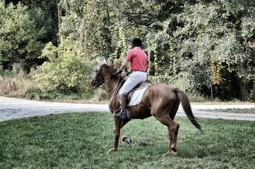 Un giro a cavallo