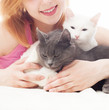girl tenderly embraces two cats