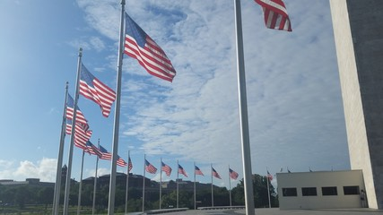 Flags encircling washington national monument