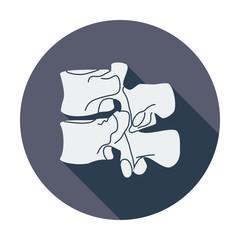 Anatomy spine icon.