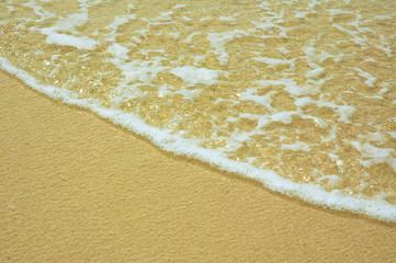 surf in the tropical beach