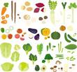 身近な野菜