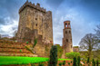 Medieval Blarney Castle in Co. Cork, Ireland - 72008307