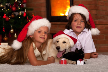 Kids and their pets at Christmas time