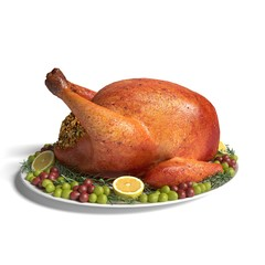 3d illustration of a turkey dinner