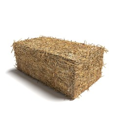 3d illustration of a hay bale rectangle