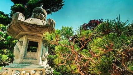 Time lapse in a Japanese garden with traditional lantern