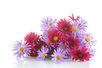 bouquet of lilac chrysanthemums