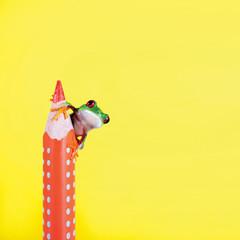 Frosch mit Buntstift vor gelbem Hintergrund