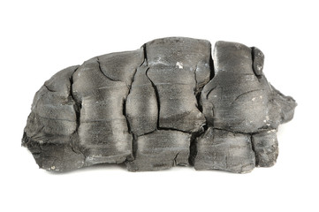 Burnt Wood Charcoal Isolated on White Background