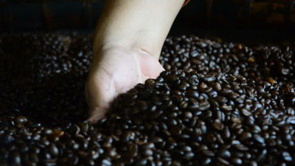 Fresh roasted coffee beans pouring out of cupped hands. HD