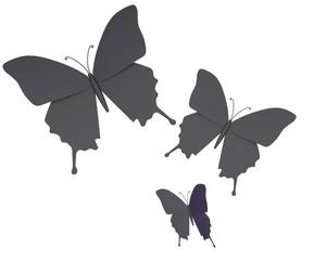 Zwarte vlinders tegen witte achtergrond