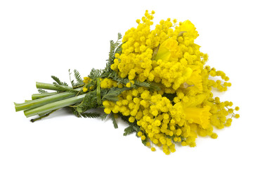 bouquet of mimosa and narcissus flowers isolated on white