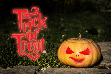 Trick or treat quote scary pumpkin on the darkgrass