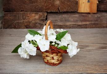 Bouquet Phlox flowers in basket on wood
