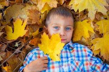 Cute boy in autumn park