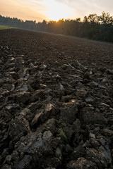 Ploughed field during sunset