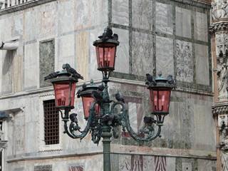 Tauben auf Straßenlaterne auf Markusplatz in Venedig