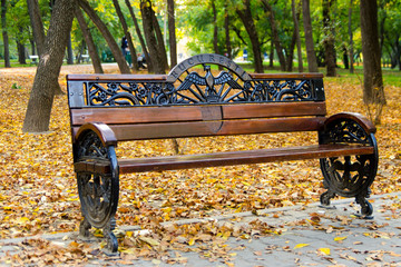 Empty bench in the park in the autumn