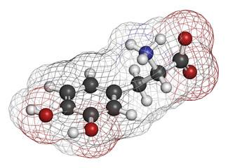 L-DOPA (levodopa) Parkinson's disease drug molecule.