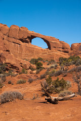 Terracotta Skyline Arch in Arches National Park