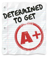 Determined to Get A Plus Grade Score Homework Assignment