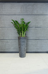Grey vase in modern interior