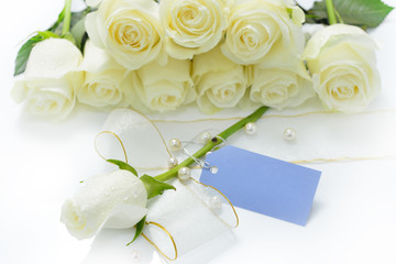 White rose flower with card