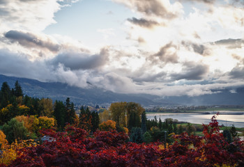 Salmon Arm in autumn
