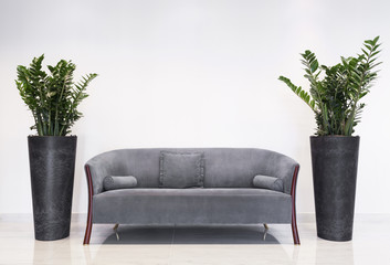 Grey sofa in modern interior