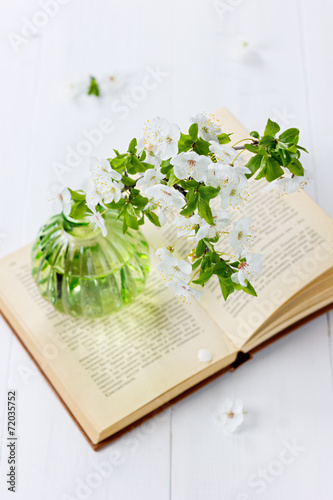 Blossom branch of cherry-tree in a vase with open vintage book - 72035752