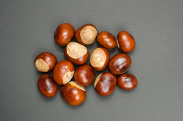 Bunch of sweet chestnuts