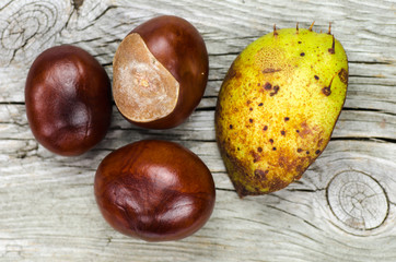 Sweet chestnuts at wooden background