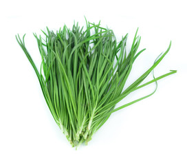 Bundle of garlic chives isolated on white background