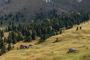 wooden huts on alpine meadow in Dolomites