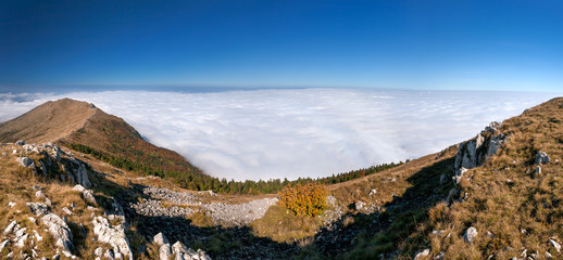 Above the clouds - mountain panorama