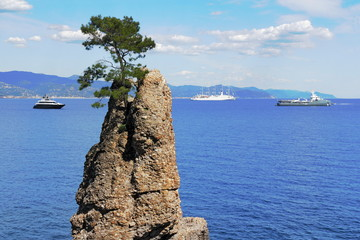 Küste vor Portofino