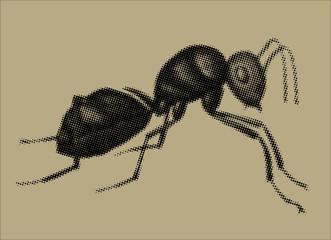 A raster illustration of an ant