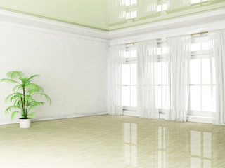 empty room with a plant and a window